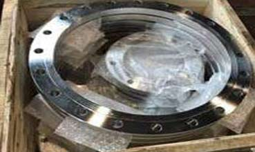 Hastelloy Flanges Suppliers in India